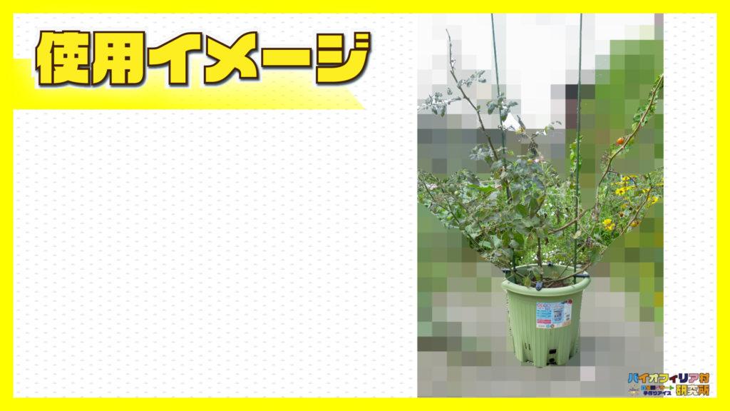 楽々菜園丸型380プランターでミニトマトを1株栽培した使用イメージ