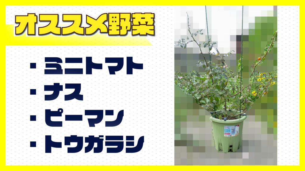 楽々菜園丸型380プランターで育てるのにオススメの野菜