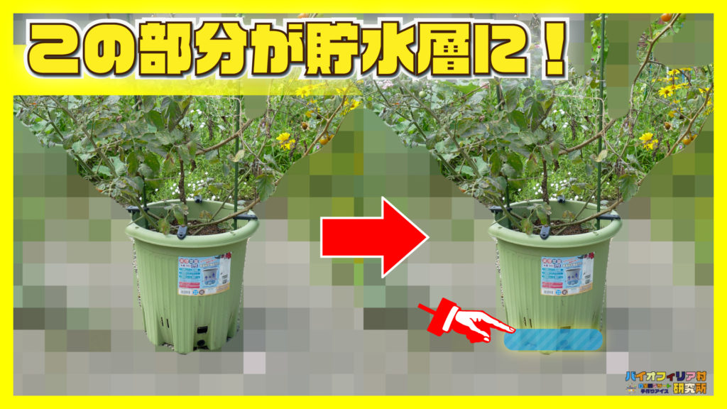 楽々菜園丸型380プランターの貯水層機能の解説