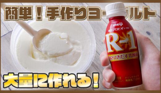 【徹底解説!R-1で手作りヨーグルト!】R-1ドリンクとヨーグルトメーカーを使う手作りヨーグルトの作り方を紹介!!